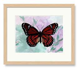 Butterflies Art Monarch