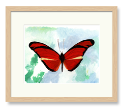 Butterflies Art Red